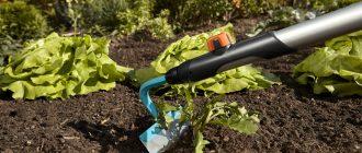 Электротяпка – помощник на огороде